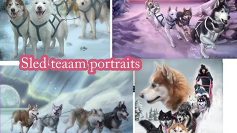 Cameo Anderson Sled Dog Husky Portrait Art 002